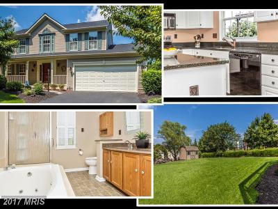 Aspen, Audubon Terrace Villas, Balmoral, Balmoral Overlook, Coldstream, Eaglehead Summerfield, Eaglehead/Pinehurst, Lake Linganore Woodridge, North Shore, Pinehurst, The Meadows, Villas At Westwinds, Villas Lake Anita Louise, Westwinds, Woodlands Preserve At Westwinds, Woodridge Single Family Home For Sale: 6076 Douglas Avenue