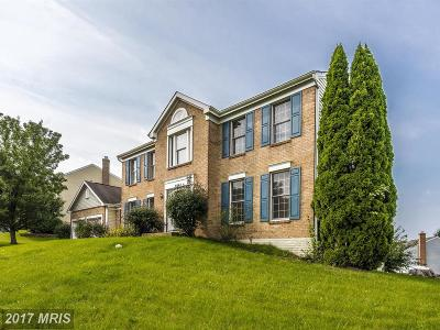 New Market Single Family Home For Sale: 6094 Douglas Avenue