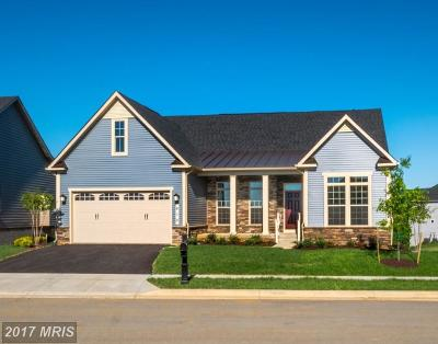 Frederick Single Family Home For Sale: 3007 Wasatch View Drive