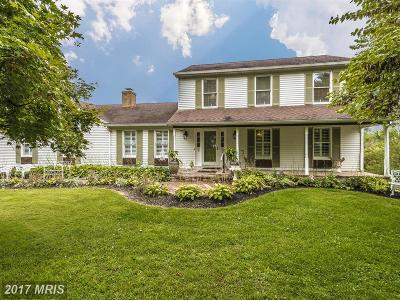 Frederick Single Family Home For Sale: 7387 Freestate Drive