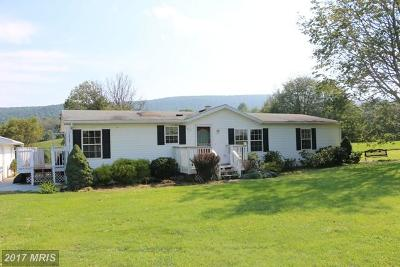 Middletown Mobile/Manufactured For Sale: 9005 Hollow Road