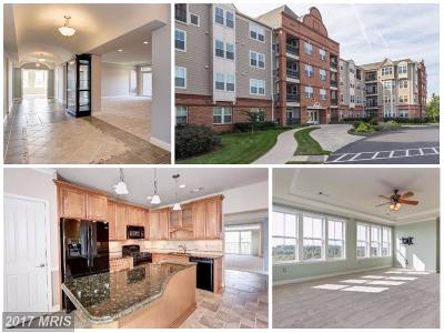 Frederick Condo For Sale: 3030 Mill Island Parkway #410