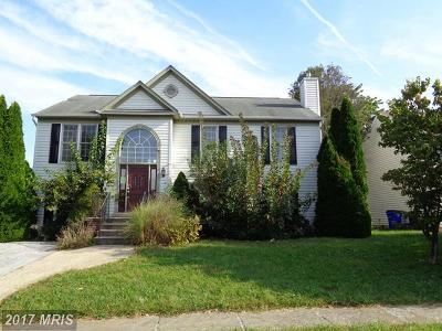 Walkersville Single Family Home For Sale: 206 Silver Stone Drive