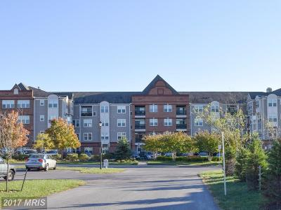 Frederick Condo For Sale: 3030 Mill Island Parkway #101