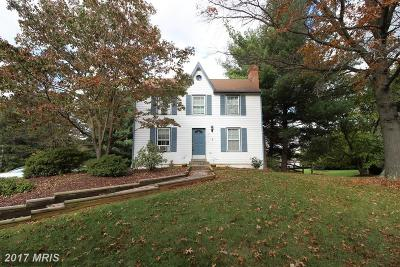 New Market Single Family Home For Sale: 167 Wicomico Court