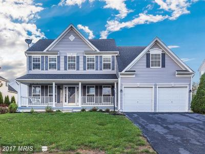 Single Family Home For Sale: 128 Greenwich Drive