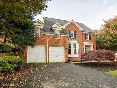New Market Single Family Home For Sale: 11323 Sanandrew Drive