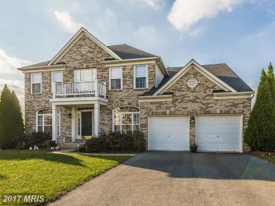 New Market Single Family Home For Sale: 5822 Drexal Avenue