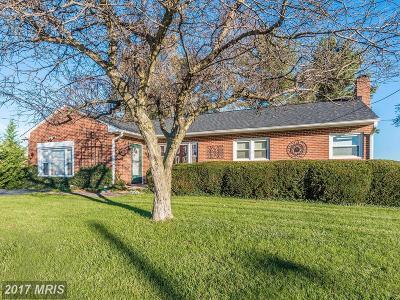 Myersville Single Family Home For Sale: 21 Main Street