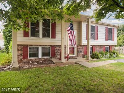 Frederick Single Family Home For Sale: 6595 Fellingwood Court