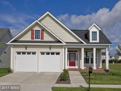 Frederick Single Family Home For Sale: 107 Forget Me Not Drive