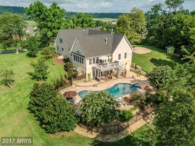 Winchester Single Family Home For Sale: 1252 Apple Pie Ridge Road