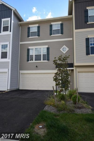 Frederick, Shenandoah, Warren, Winchester City Rental For Rent: 108 Rotunda Drive