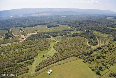 Frederick Residential Lots & Land For Sale: 806 Hollow And Parrishville Road