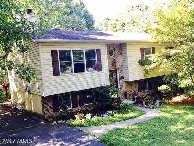 Frederick Single Family Home For Sale: 303 Lakeview Drive