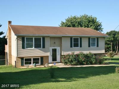Frederick Single Family Home For Sale: 1113 Clarkville Drive