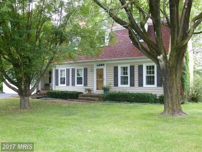 Middletown Single Family Home For Sale: 7024 Valley Pike S