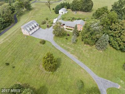 Winchester Single Family Home For Sale: 3500 Cedar Creek Grade