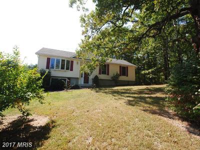 Frederick, Harrisonburg City, Page, Rockingham, Shenandoah, Warren, Winchester City Single Family Home For Sale: 180 Indian Lake Road