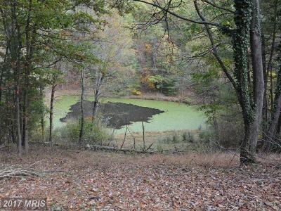 Frederick, Harrisonburg City, Page, Rockingham, Shenandoah, Warren, Winchester City Residential Lots & Land For Sale: 1533 Adams Road