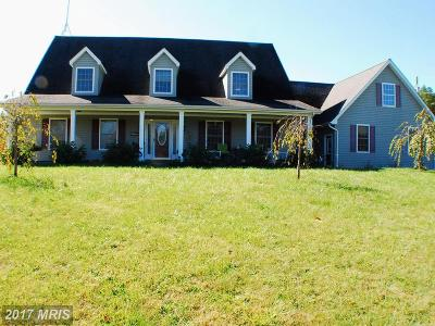 Winchester Single Family Home For Sale: 845 Back Mountain Road