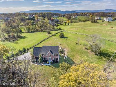 Frederick Single Family Home For Sale: 627 Chimney Circle