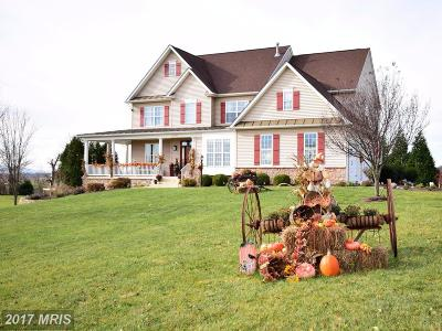 Winchester Single Family Home For Sale: 113 Hockman Court