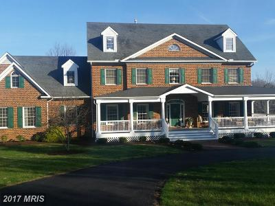 Winchester Single Family Home For Sale: 2999 Back Mountain Road