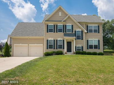 Frederick Single Family Home For Sale: 113 Colonial Drive