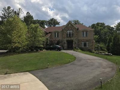 Vienna Single Family Home For Sale: 9599 Thistle Ridge Lane