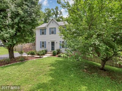 Chantilly Single Family Home For Sale: 4527 Samuels Pine Road