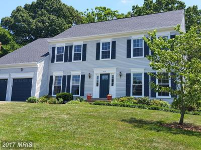 Chantilly Single Family Home For Sale: 4317 Galesbury Lane