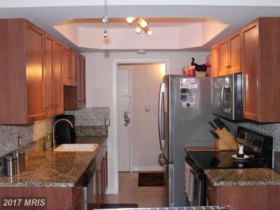 Reston Condo For Sale: 2237 Castle Rock Square #21C