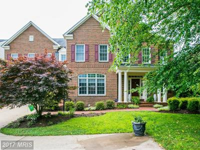Fairfax Single Family Home For Sale: 11843 Robertson Farm Circle