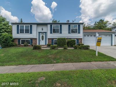 Single Family Home For Sale: 1104 Wintrol Court