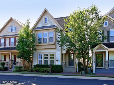 Lorton Single Family Home For Sale: 9113 Stonegarden Drive