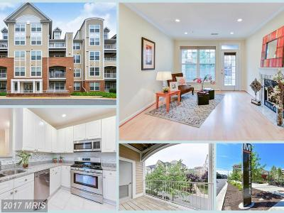 Vienna Condo For Sale: 2701 Bellforest Court #203