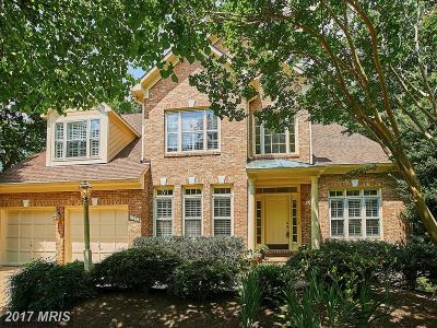 Reston Single Family Home For Sale: 11270 Center Harbor Road