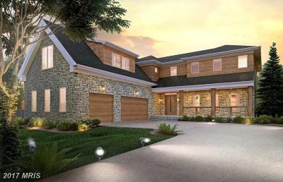 Fairfax, Loudoun Single Family Home For Sale: 1766 Proffit Road