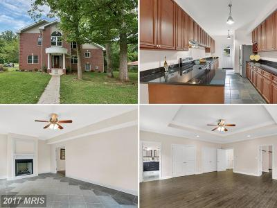 Falls Church Single Family Home For Sale: 7301 Brad Street