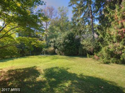 Vienna Single Family Home For Sale: 224 Church Street NE