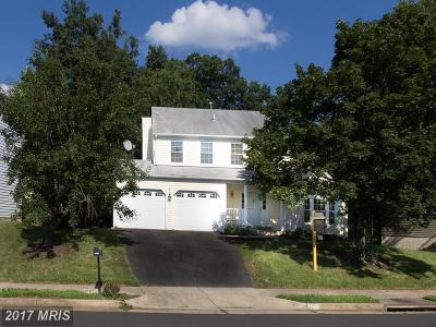 Centreville Single Family Home For Sale: 5719 Rocky Run Drive