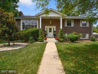Annandale Single Family Home For Sale: 4100 Wynnwood Drive