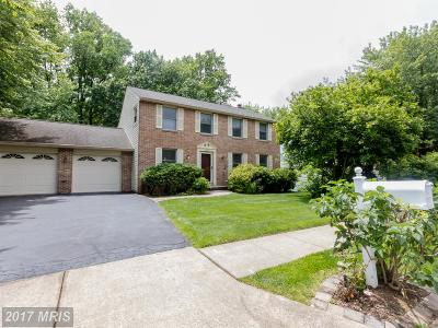 Annandale Single Family Home For Sale: 3343 Happy Heart Lane