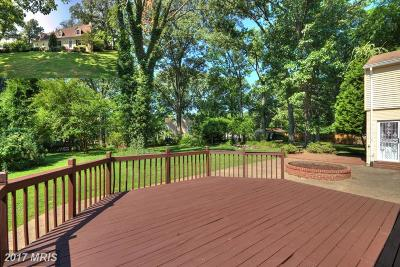 Annandale Single Family Home For Sale: 3528 Gallows Road