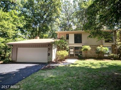 Annandale Single Family Home For Sale: 8600 Battailles Court