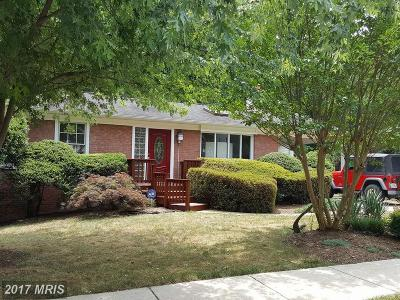 Chantilly Single Family Home For Sale: 13801 Fulmer Drive