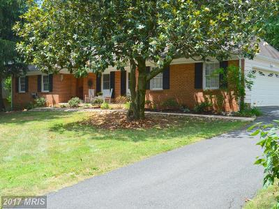 Annandale Single Family Home For Sale: 8235 The Midway