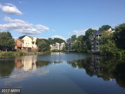 Falls Church Condo For Sale: 7592 Lakeside Village Drive #I