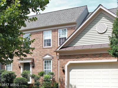 Herndon Single Family Home For Sale: 12873 Williams Meadow Court